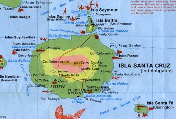 Galapagos Island Hotels Galapagos Diving Galapagos Islands